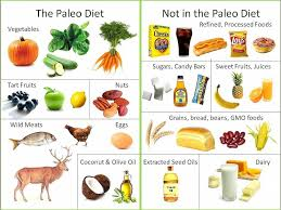what to eat in paleo diet